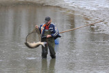 Fisherman ribiè_MG_5959-11.jpg