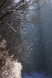 Snowing sne¾enje_MG_4234-11.jpg