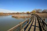 Marano Lagunare Valle Canal Novo_MG_7900-11.jpg