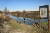 Marano Lagunare Valle Canal Novo_MG_7870-11.jpg