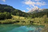 Zelenci, spring of river Sava_MG_0859-11.jpg