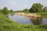Barycz river_MG_9642-111.jpg