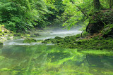 Močilnik, spring of Ljubljanica river_MG_3779-111.jpg