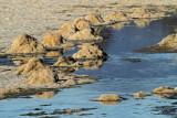wetlands_rivers_lakes_ponds
