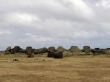 toppled Moai at Ahu Akahanga.....