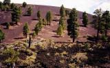 Sunset Crater - Flagstaff, Arizona