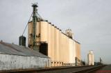 Black - Attebury Grain.