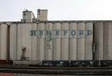 Hereford - Hereford Grain Co-op.