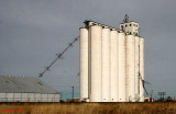 Bovina - Sherley Anderson Grain - AGP Grain Co-op.