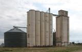 Hale - Evans Grain - Hale Center Wheat Growers - MP 640.9.