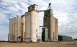 Hale - Evans Grain - Hale Center Wheat Growers - Plainview subdivision.