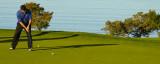 Torrey Pines Golf Tourney