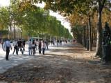 Paris_Oct8_small_240.jpg