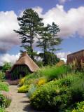 Gardens, Baddesley Clinton (6109)