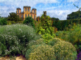 Garden greenery, Hardwick Hall (3903)