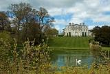 House and swan, Kingston Maurwood