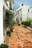 Street and flowers, Ochen