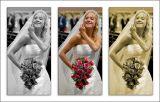 Sarah ~ triptych