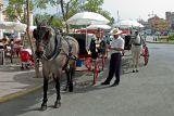 Horse taxis, Fuengirola
