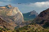Mountains and eagle, near El Chorro