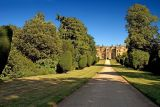Montacute House ~ main drive again