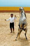 Horse and trainer, Jardin de Las Aguilas