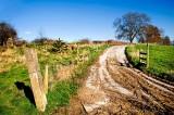 Farm Lane, Martock