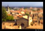 Les toits d'Avignon
