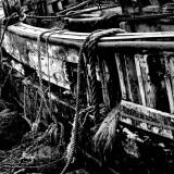 Mull - wreck on east coast