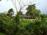 Veranda at Asa Wright (from Discovery trail)