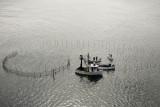 Reburbishing the herring weir