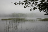 Misty morning on Brown Tract Pond