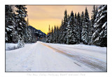 Frozen Road- The Bow Valley Parkway