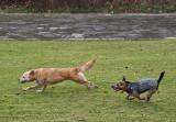 Sahraa and Molly have a playday