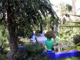 040 Marrakech - Mjorelle garden scene.JPG