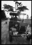 tractorcow.jpg