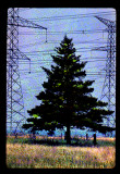Powerline Transmissions