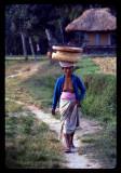 Bali 1979