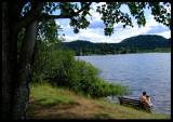 Lakeside Bench.jpg