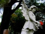 angel61.jpg