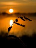 07_Sep_09_Belfort Sunrise