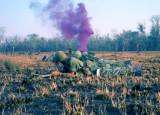 LZ 1 - Recon Platoon leader 1Lt. Jim Deegan - smoke out!
