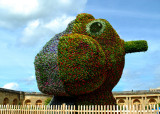Versailles Gardens - Two-Sided Topiary