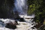 Fish Creek Falls Mist and Trees