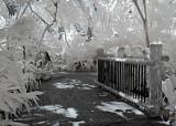 Walkway Infrared