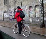 A single biker