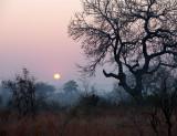 Sunset at Londolozi.