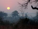 Sunset at Londolozi