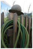 een tuinslang is niet giftig