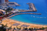 Tilt Shift Fun..